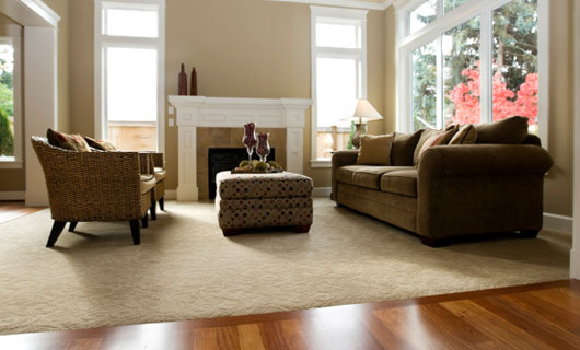 Carpet and Fabric Cleaning, Hillsborough, NJ
